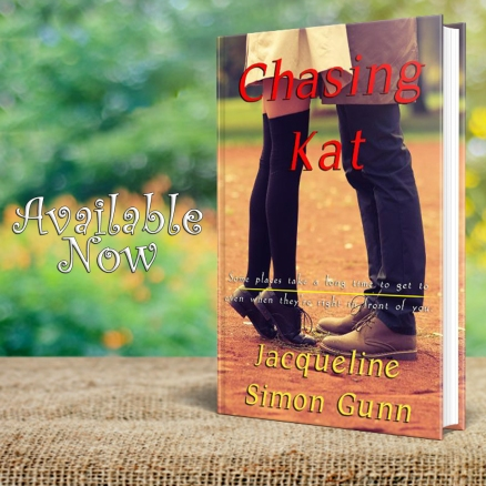 Chasing Kat [Hudson River Series, Book 3]